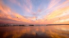 sunset-1fb (Nicholas Licata) Tags: beach family july4th landscape longbeach ocean