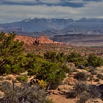 The Antidote to Exhaustion Isn't Rest, It's Nature (Arches National Park) thumbnail