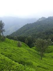 Top Station (BOLDMAR) Tags: top station tamil nadu india