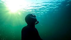 Sun in the back (Niklas FliNdt) Tags: anpnea apnea freediving water underwater diving scuba suit mask snorchel fishes sun blue green lake sea ocean travel geeste
