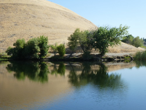 2018-07-19 - Pictures of Contra Loma Regional Park
