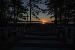 193/365: Church Island Sunrise (Thursday, July 12th)