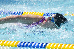 SONC SummerGames18 Tony Contini Photography_1239 (Special Olympics Northern California) Tags: 2018 summergames swimming swimmer athlete femaleathlete water specialolympics