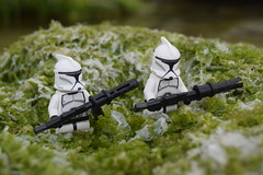 Scouting Sector. (Working hard for high quality.) Tags: toy lego star wars clone trooper minifigure republic soldier seaweed rock green white focus photography nature beach seaside stone