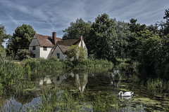 A familiar scene (David Feuerhelm) Tags: nikkor cottage water reflection trees roof swan countryside wideangle flatford suffolk nikon d750 1635mmf4