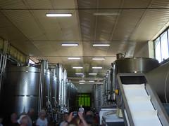 Cecchi wine tasting and tour - grape crushing machines (ell brown) Tags: italy italia tuscany toscana cecchi localitàcasinadeiponti castellina chianti villacerna foresteriavillacerna winery winetasting wine wines stradaprovincialedicastellinainchianti vineyard grapecrushingmachines