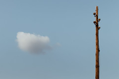(untitled) (FButzi) Tags: genova genoa liguria italy italia abstract minimal cloud