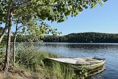 < still life with boat > (Mister.Marken) Tags: water tree landscape stilllife boat photodelight