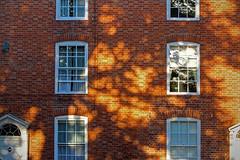 Evening shadows, Feckenham (alanhitchcock49) Tags: feckenham worcestershire redditch evening light red brick shadows