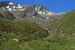 arrivée au chalet des Planards 2185 mètres (bulbocode909) Tags: valais bourgstpierre valdentremont combedesplanards chaletdesplanards chalets cabanes montagnes nature paysages vert bleu suisse chemins neige rhododendrons