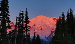 Canon EOS 5D Mark IV - 0C4A7616 (rogerbtree) Tags: waterfalls mountains astrophotography mt rainier st helens adams milky way sunsets sunrise wildflowers old growth trees