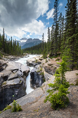 Oh Canada.... (gatorlink) Tags: canonef1635mmf4lisusm forest waterfall green blue trees conifers canada canadian icefields parkway lee filters gnd nd graduated neutral density little stopper banff jasper national park