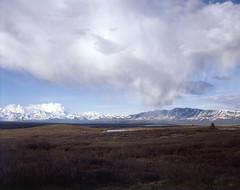 Denali Highway views (musubk) Tags: film analog photography nature tundra denali alaska large format 4x5