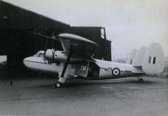 XM957. Scottish Aviation Twin Pioneer CC.1 (Ayronautica) Tags: 1958 november military scottishaviationtwinpioneercc1 xm957 royalairforce raf scanned egpk pik prestwick aviation ayronautica