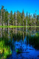 Siesta Lake (Yaecker Photography) Tags: sierra sierranevada mountains yosemite yosemitenationalpark yosemitevalley lake water waterporn pond trees reflection waterreflection yosemiteconnect