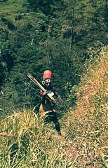 PKN-30-064b (Stichting Papua Erfgoed) Tags: papuaheritagefoundation stichtingpapuaerfgoed papua irianjaya voormalignederlandsnieuwguinea nederlandsnieuwguinea irianbarat anthonyvankampen pace