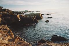 coastal air, part one (manyfires) Tags: coast coastline shoreline shore pacificocean ocean sea landscape seascape water sand waves tide film analog nikonf100 35mm california pointlobos sunset golden magichour
