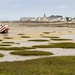 Baie de Roscoff [France] [Explore n°122 du 2018.07.09] (Vins 64) Tags: explore brittany bretagne finistere roscoff sea seascape mer beach city landscape