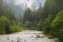North Fork of the Yuba River (buffdawgus) Tags: yubarivernorthfork california landscape sierranevadarange tahoenationalforest lightroom6 canon7d topazsw sierracounty canon70200mm28l yubariver