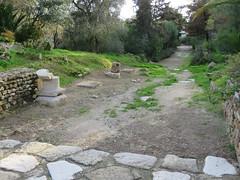 Carthage #10 (jimsawthat) Tags: ruins excavated carthage urban tunis tunisia