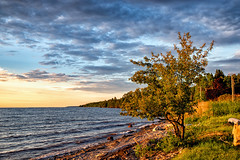 177:365: Golden Hour (LostOne1000) Tags: 260618 365challenge 365the2018edition 3652018 baragacounty camera day177365 equipment greatlakes june lanse lakesuperior locations michigan nature pentax pentax2470f28edsdm pentaxk1 pentaxlenses photography places scenery shore unitedstates upperpeninsula cy365