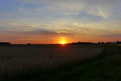 Sunrise (ivlys) Tags: biebesheim rhein rhine sonnenaufgang sunrise landschaft landscape ländlich rural himmel sky wolke cloud natur nature ivlys