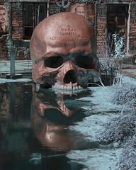 La demeure du Chaos - IR (Gui.llau.me) Tags: la demeure du chaos abode progress thierry herman lyon street art urban skull head crâne infrarouge reflection reflect reflet ir infra rouge infrared