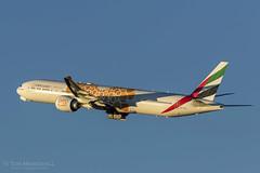 Bubble Dubya (Tom Marschall) Tags: syd dxb sydney dubai emirates airlines 777 747 717 727 737 757 767 air line airliner jet jetliner aviation plane australia