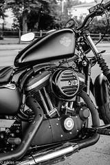 Evening in July, 2018 (aixcracker) Tags: nikond500 nikonaf35mmf20d d500 nikon 35mm borgå porvoo suomi finland evening kväll ilta july juli heinäkuu summer sommar kesä europe europa eurooppa motorcycle motorcykel moottoripyörä bike harley davidson black white svartvit mustavalkoinen iso12800 highiso