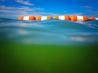Water Cam Fun @ Sibbald Point