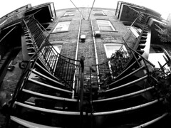 Plateau Staircases 1 (MassiveKontent) Tags: stairs staircase streetphotography montreal bw contrast city monochrome urban blackandwhite street photo montréal quebec photography bwphotography streetshot architecture asphalt concrete shadows noiretblanc blancoynegro geometric gopro fisheye cityscape
