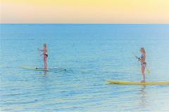 Still water (thomasgorman1) Tags: sea ocean shore beach woman women bikini paddle board paddleboard recreation exercise sport island hawaii surfboard standing sup standup nikon