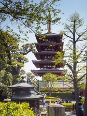 Buddhist Temple Sensō-ji (AMcUK) Tags: taitōku tōkyōto japan jp em10 omdem10 omdem10mkii em10mkii omd olympus olympusuk m43 micro43rds micro43 microfourthirds nippon tokyo sensōji shrine temple buddha buddhism buddism