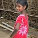 Indian Village Modelling