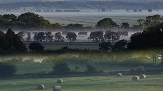 Am frühen Morgen - mehrfach Blick über die  Bergenhusener Landschaft, Stapelholm (61a) (4)