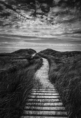 Plage Des Dunes-de-L'Est - Entrance (SNAPShots by Patrick J. Whitfield) Tags: blackwhite blackandwhite bw bnw noire noiretblanc monochrome light shadows sunlight sun summer bright walkway lines patterns details dof texture landscape outside nature leadinglines clouds entrance old life wood