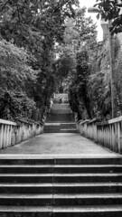 Marjan Staircase (HansPermana) Tags: split croatia kroatien hrvatska sea seascape adriaticsea city cityscape marjan staircase blackandwhite monochrome