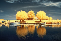 silence is golden (O l l i . B .) Tags: nl netherlands nederland holland infrared infrarot oliverbuchmann ollib canoneos400d canonefs18135mmf3556isusm blue yellow tree boat ship water landscape cloud sky