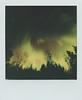 Aurora Borealis (Maija Karisma) Tags: polaroid instant pola littlebitbetterscan color600 sx70 nature spring roidweek2018 roidweek polaroidoriginals