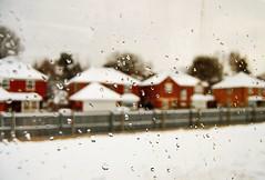 20101219 Tattenham snow ([Ananabanana]) Tags: nikon d40 gimp photoscape 1855mm 1855 nikkor nikon1855mmkitlens nikkorafsdx1855mm nikonafsdx1855mm nikkor1855mm nikon1855mm nikonistas nikonista uk unitedkingdom epsom surrey snow winter cold window train tattenhamcorner southernrail bokeh dof