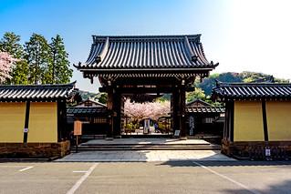 Tower gate of Kenchoji Temple, Kamakura : 北鎌倉・建長寺楼門