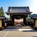 Tower gate of Kenchoji Temple, Kamakura : 北鎌倉・建長寺楼門 thumbnail
