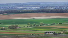 Fields, Champagne-Ardenne, France (voyageurrr) Tags: frankrijk image shot cybershot sony марна франция пейзаж природа nature countryside country verde vert green champs fields vue view beauty landscape paysage marne picardie ardenne champagne reims france