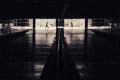 I ⌦ I   I ⌫ I (fehlfarben_bine) Tags: nikondf sigmaart500mmf14 streetphotography potsdamerplatz underground trainstation tunnel walker reflections contrast monochrome availablelight candid lines berlin silhouettes walking symmetry
