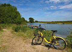 More Summer on Thames (Free.heel) Tags: ofo ofobike binsey thames riverthames thamestowpath nikond810 nikkor2485mmf3545gedvrlens oxfordshire oxford portmeadow summer yellowperil