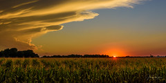 Nebraska Sunset (jrash168) Tags: landscape agriculture sunset corn fields clouds storms beauty epic