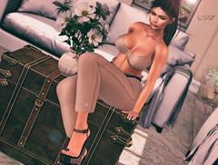 ◈№. 520 - whatever it takes (αlιcα r. vαɴ нell) Tags: besom maitreya catwa seniha originals pure poison c88 collabor88 cosmopolitan n21 sl secondlife girl