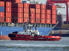 DSCN1539 (Darren B. Hillman) Tags: ships tugs kotugsmit rivermersey newbrighton p900 damen asd2810 nikon