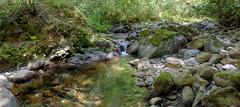 A Not-So-Roaring Stream (Non Paratus) Tags: ladysmith britishcolumbia canada stream creek rocks panorama landscape hiking