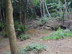 IMGP1968 (陳竹 / bamboo / Baipaii) Tags: thailand kanchanaburi waterfall erawanwaterfall onedaytrip pentaxq7 thammasat exchangestudent